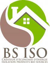 Logo-BS-ISO-50.jpg